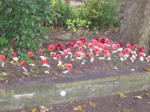 A display of poppies on Remembrance Day for local victims of war